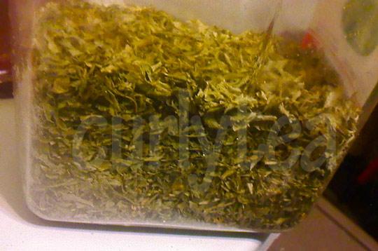 parsley curlytea