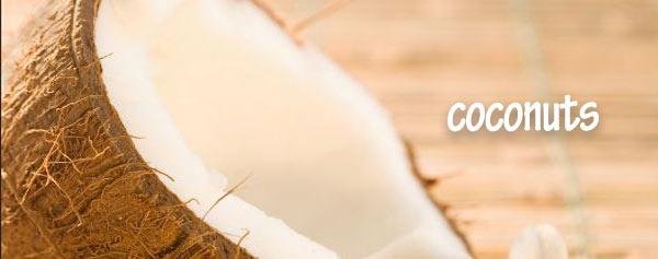coconutsfront01 curlytea