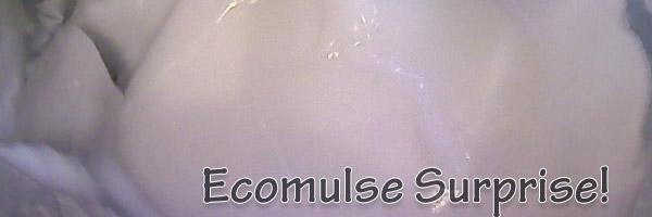 ecomulsexpfront01 curlytea