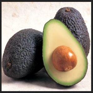 avocado - curlytea.com