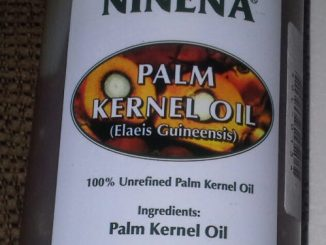 palmkernel creamy moisturizer - curlytea.com