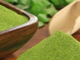 Moringa oleifera contains over 90 different nutrients c urlytea.com